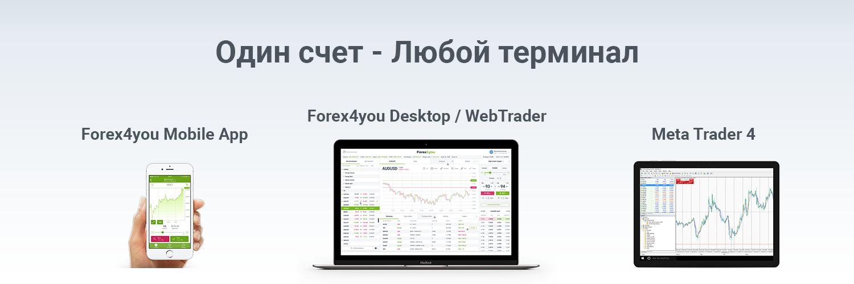 Web терминал forex4you курсы forex краснодар